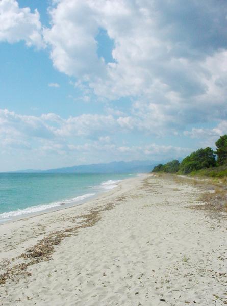 La Côte Orientale : Bienvenue en Corse Orientale !