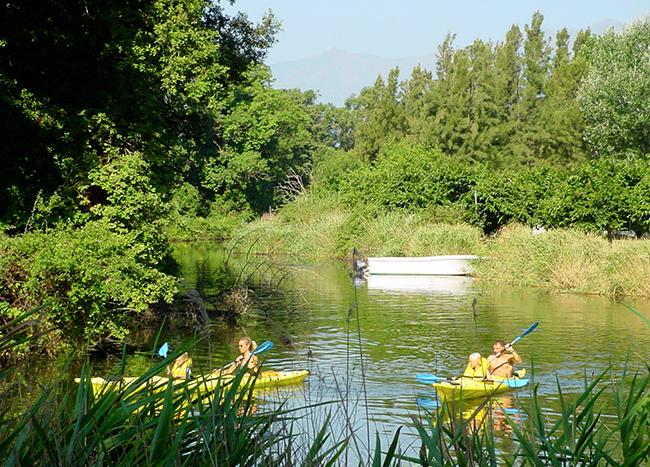 Location de vélos et de kayaks
